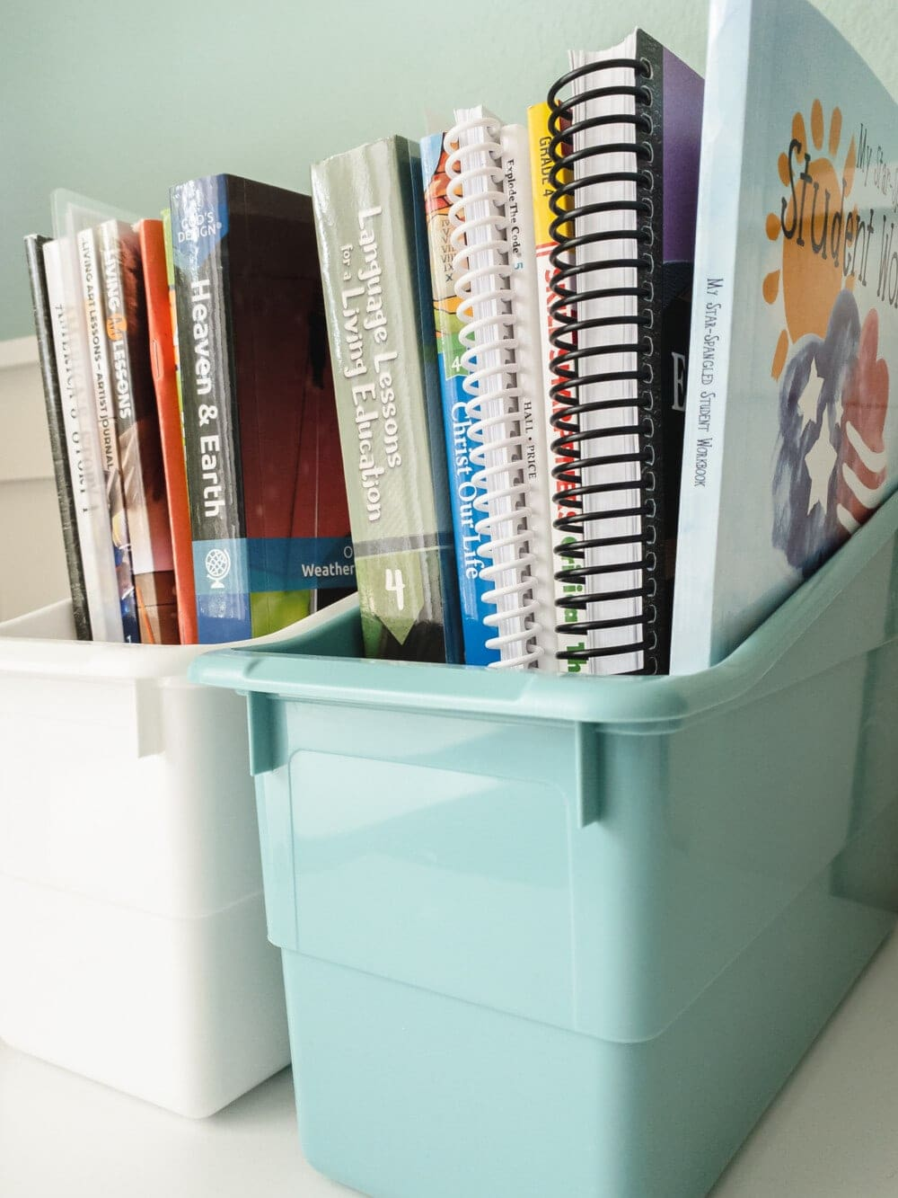 two plastic bins with books for homeschool curriculum organized in them